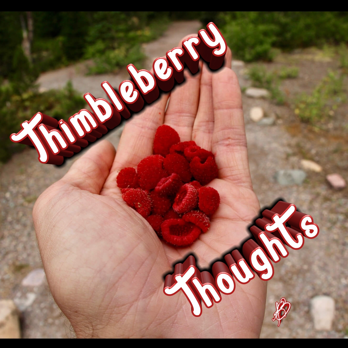 Thimbleberry Thoughts